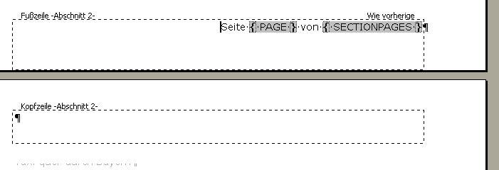 Abbildung Feldfunktionen innerhalb von Word zur Seitennummerierung der Seiten eines Abschnitts
